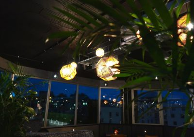 Rooftop-Gardens-Lights-and-Palm-trees-1440x960